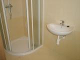 Koupelna bytu - sprcha a umyvadlo